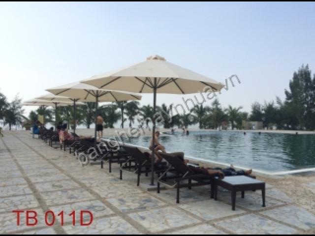 Ghế Hồ Bơi TB 011