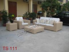 Bàn ghế sofa TS 111